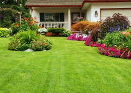 gainesville lawn maintenance